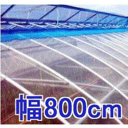 カット販売 塗布無滴農POイースター 厚み0.1mm幅800cm長さ30m重さ約22.8kg