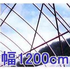 塗布無滴農POイースター 厚み0.075mm 幅1200cm長さ30m 重さ約25.9kg 【smtb-ms】