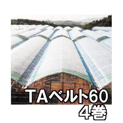 東罐 トーカン TAベルト60 徳用4巻 ハウスバンド ハウス農PO押え【smtb-ms】