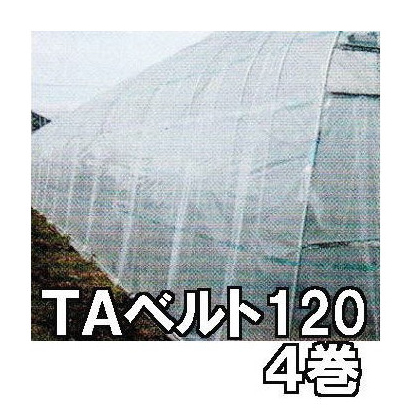 東罐 トーカン TAベルト120 徳用4巻 ハウスバンド ハウス農PO押え【smtb-ms】
