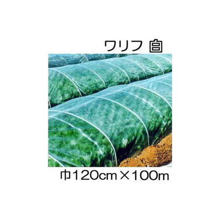 JX ANCI 日石 ワリフ HS-1200 白 120cm×長さ100m 日新商事 遮光率5% 不織布