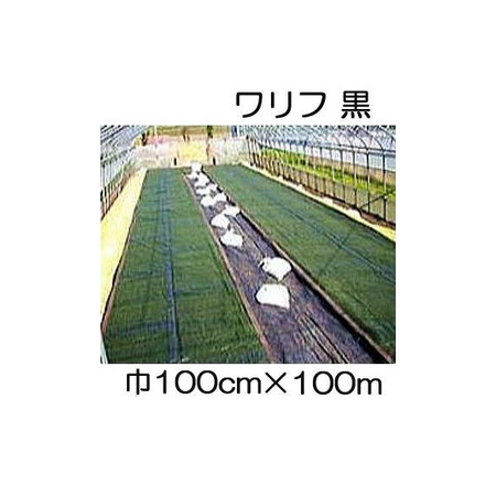JX ANCI 日石 ワリフ HS-1000 黒 100cm×長さ100m 遮光率50% 不織布 日新商事 [簡単設置 軽量 防虫 防雨 安全 保温]