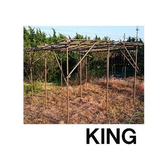 セキスイ フルーツパーゴラ S-DX 大型 キングタイプ 3m×3m×2mH KINGサイズ