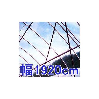塗布無滴農POイースター 厚み0.100mm 幅1920cm長さ30m
