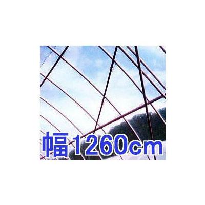 塗布無滴農POイースター 厚み0.1mm 幅1260cm長さ30m 重さ約35.9kg