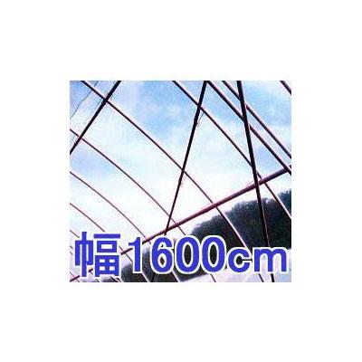 塗布無滴農POイースター 厚み0.1mm 幅1600cm長さ30m 重さ約45.6kg