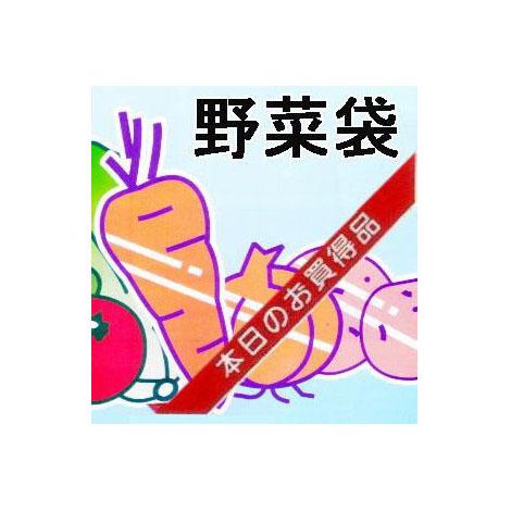 OPP防曇野菜印刷袋 生き生きパック#25ごぼう、ほうれん草など・・・6000枚[野菜袋 瀧商店]