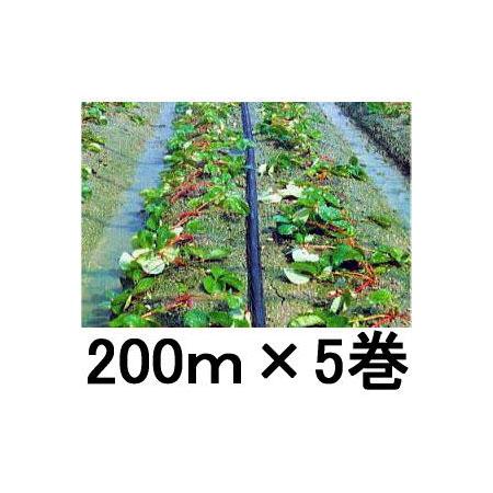 点滴も噴霧も巾広く使えます 超激安特価 灌水ホース スミサンスイM 住化農業資材 200m×5巻セット スーパーセール