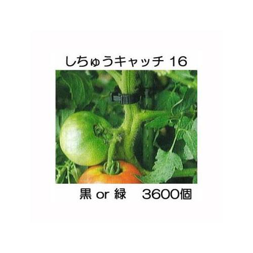 誘引資材 しちゅうキャッチ 16 (3600個入) 黒or緑 色選択 支柱径16mm用 シーム S16B-300 S16G-300