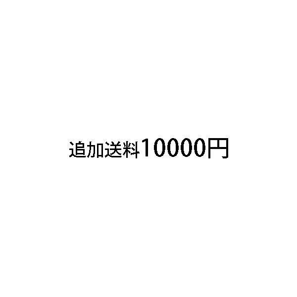 追加送料10,000円