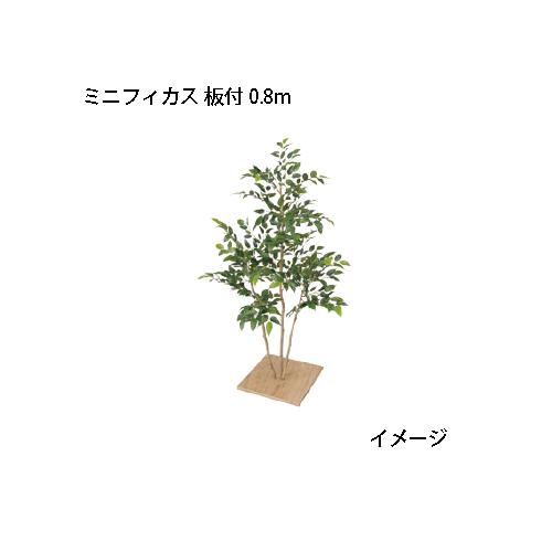 (室内用)人工植物 観葉植物 ミニフィカス 板付 0.8m(GD-123 21578200)[タカショー 園芸用品 エクステリア 農機具 瀧商店]