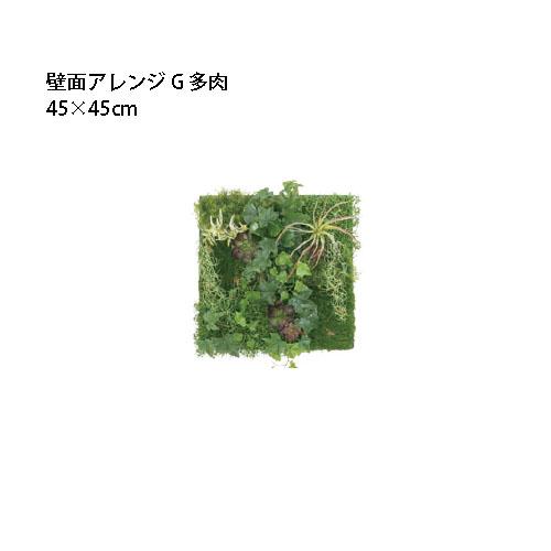 (室内用)人工植物 壁面アレンジ 45×45cmG 多肉(33584800 GD-201G)[タカショー 園芸用品 エクステリア 農機具 瀧商店]