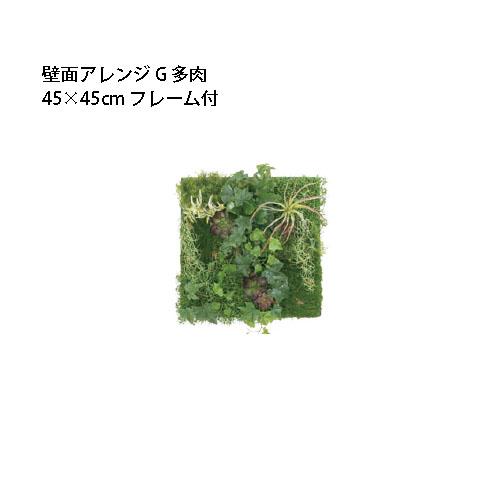 (室内用)人工植物 壁面アレンジ 45×45cmフレーム付 G 多肉(33538100 GD-201GF)[タカショー 園芸用品 エクステリア 農機具 瀧商店]