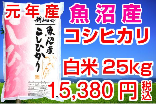 30年産 魚沼産コシヒカリ 白米25kg(5kg×5袋)送料無料!(地域限定)お米マイスター特選 魚沼産こしひかり おいしいコシヒカリをどうぞ!