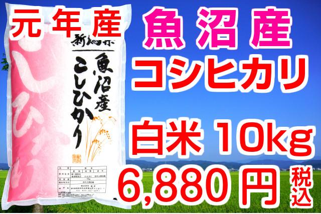 ◆新米◆ 令和元年産 魚沼産コシヒカリ 白米10kg(5kg×2袋)お米マイスター特選 魚沼産こしひかり おいしいコシヒカリをどうぞ!