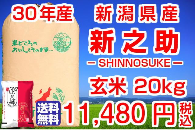 30年産 新潟県産 新之助!送料無料!(地域限定)玄米20kg(5kg×4袋)お米マイスター特選 贈り物・ご家庭用においしい新潟米をどうぞ!