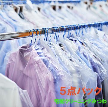 衣類5点パック 迅速な対応で商品をお届け致します 送料無料 最新アイテム 宅配クリーニング こだわりの洗浄と仕上げ
