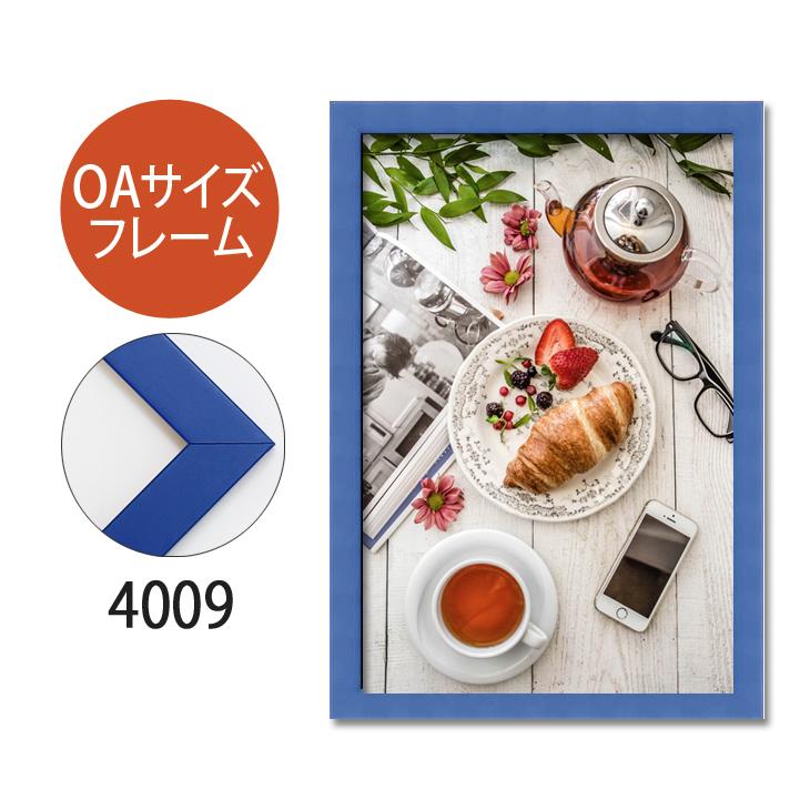 ポスターフレーム OAサイズ 額縁【A-4009】B2・OAサイズ ディスプレイ インテリア 室内装飾
