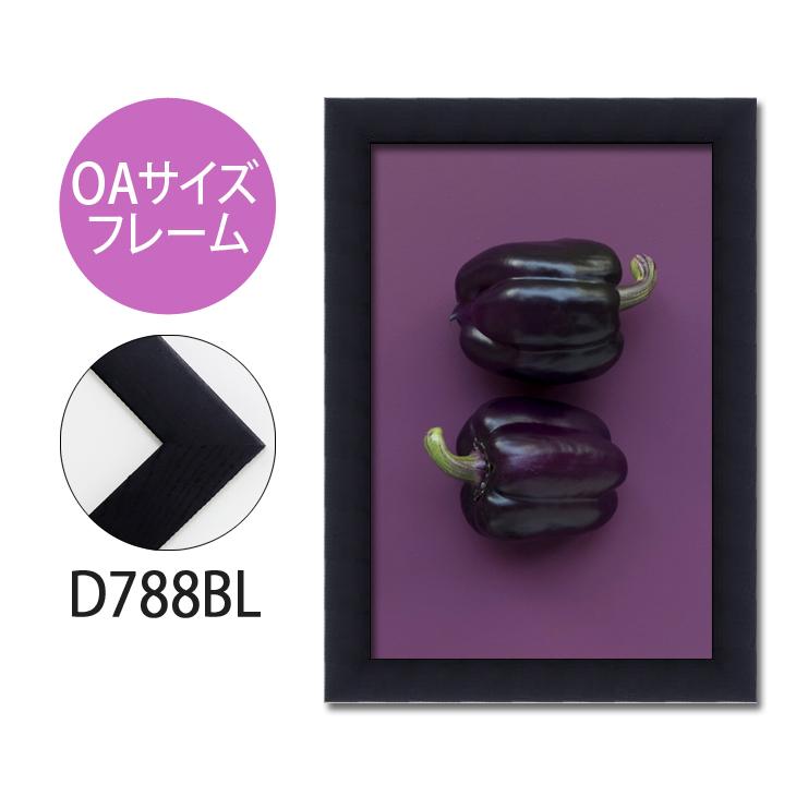 ポスターフレーム OAサイズ 額縁【A-d788bl】B2・OAサイズ ディスプレイ インテリア 室内装飾