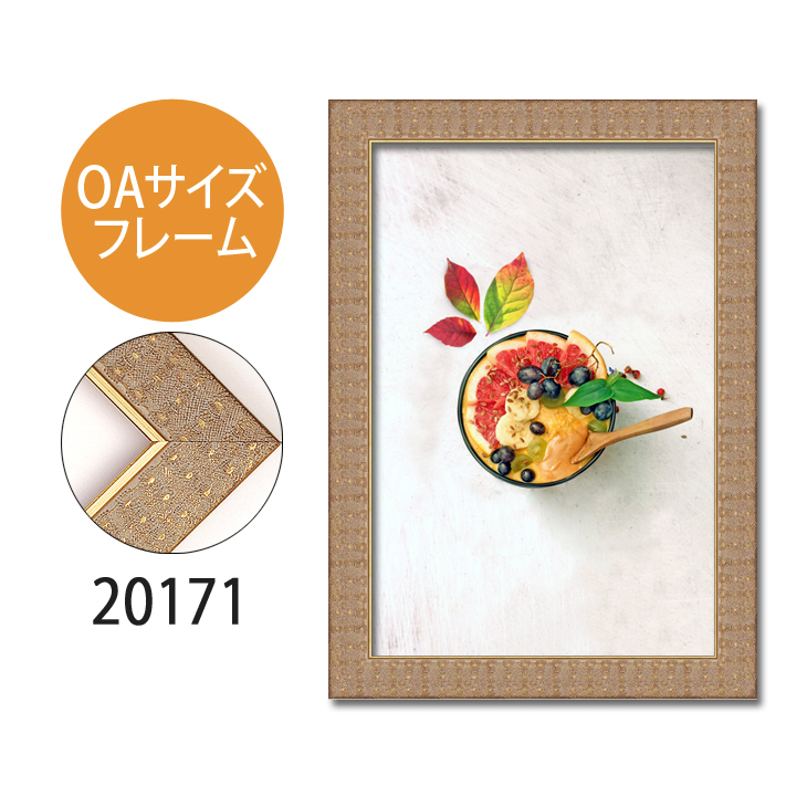 ポスターフレーム OAサイズ 額縁【B-20171】B4・OAサイズ ディスプレイ インテリア 室内装飾