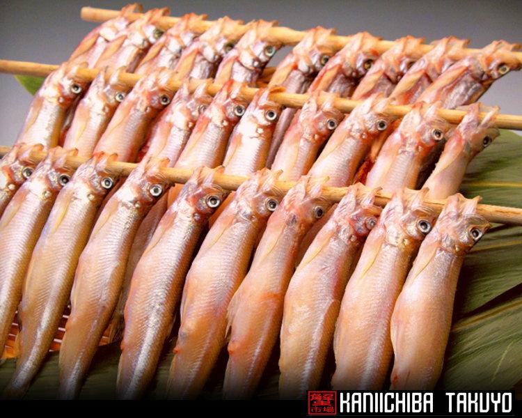 日本正規品 北海道から海鮮グルメお取り寄せ 釧路産シシャモ メス 低廉 10尾 3串