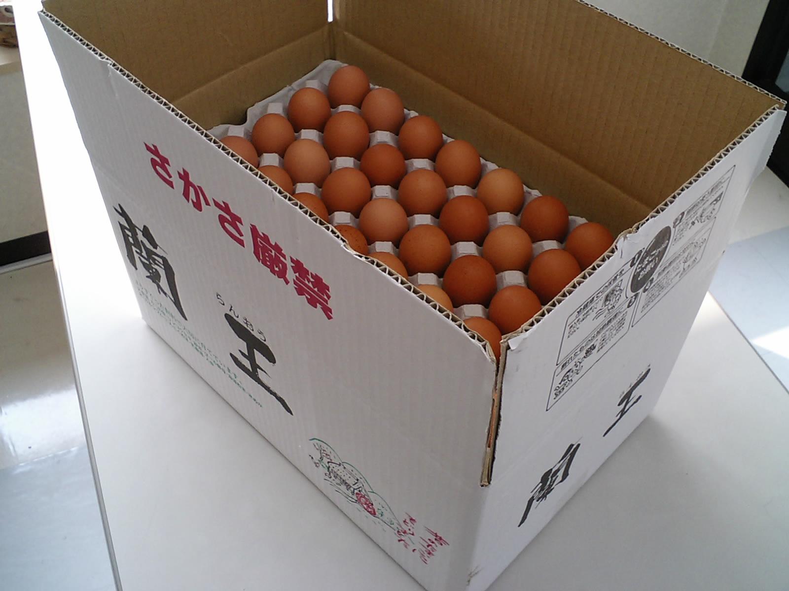 こだわりたまご蘭王 Lサイズ ◆セール特価品◆ 10kg 103個~116個 破損保障40個 卵 実物 鮮やかな濃いオレンジ色の卵黄色 たまご 新鮮