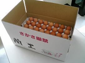 こだわりたまご蘭王 Lサイズ 5kg 52個~58個 破損保障20個 鮮やかな濃いオレンジ色の卵黄色 セール商品 卵 たまご 舗 新鮮