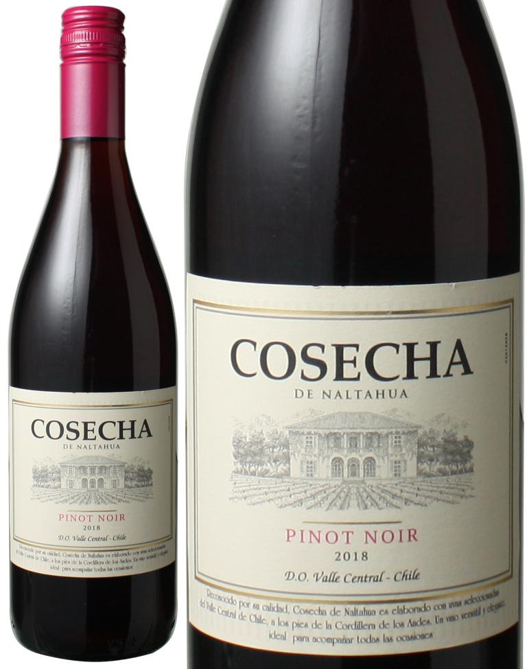 コセチャ タラパカ ピノ 日本製 ノワール 2018 ワイン ※ヴィンテージが異なる場合があります ストア チリ 赤