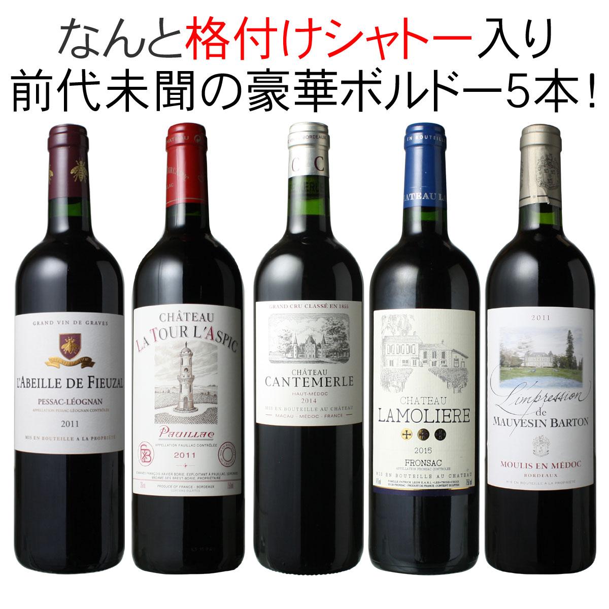 【送料無料】ワインセット メドック 格付けシャトー入り ボルドー ワイン 5本 セット 赤ワイン パーティー 家飲み 御祝 誕生日 母の日 ギフト 前代未聞 第20弾