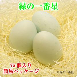 【送料無料】緑の一番星(あすなろ卵) 75個入り・簡易パッケージ 緑色の殻が特徴です【たまごかけごはんにどうぞ!】 | 青森 お土産 ギフト お取り寄せ 青森県産 東北 卵かけご飯 卵 ご飯のお供 青森県 たまごかけごはん