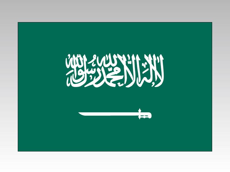 サウジアラビア 国旗 90×135cm エクスラン生地(アクリル100%) 外国旗 応援 会議