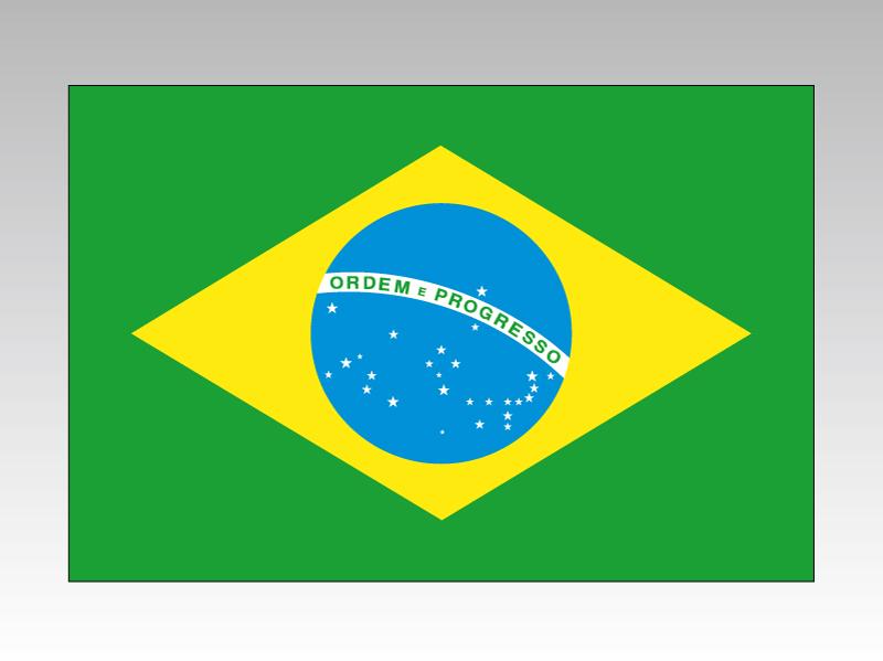 ブラジル 国旗 90×135cm エクスラン生地(アクリル100%) 外国旗 応援 会議