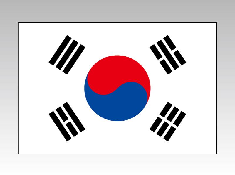 大韓民国 韓国 国旗 90×135cm エクスラン生地(アクリル100%) 外国旗 応援 会議