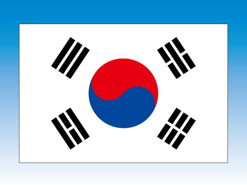 大韓民国 韓国 国旗 120×180cm エクスラン生地(アクリル100%) 外国旗 応援 会議