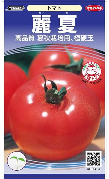 トマト 種 『麗夏』 【PRIMAX】1000粒 サカタのタネ