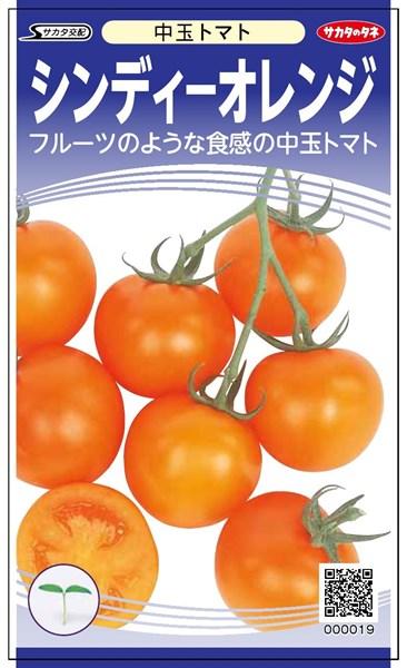 中玉トマト 種 『シンディーオレンジ』 【PRIMAX】1000粒 サカタのタネ