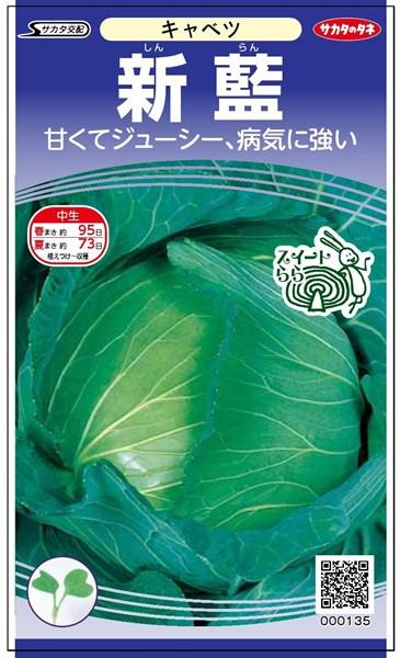 初夏・秋どりキャベツ 種 『新藍』 2000粒 サカタのタネ