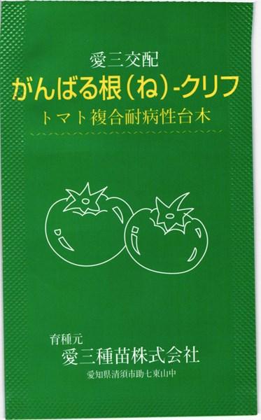 トマト台木 種 『がんばる根クリフ』 コート1000粒 愛三種苗