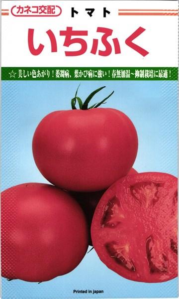 オンライン限定商品 メール便 ふるさと割 OK トマト たね 大玉トマト カネコ種苗 種 いちふく 1000粒