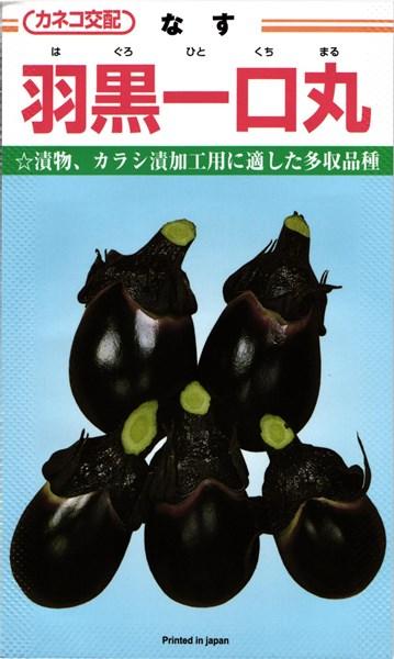 メール便 OK 茄子 買収 たね いつでも送料無料 ひとくちナス 羽黒一口丸 種 カネコ種苗 2000粒 はぐろひとくちまる