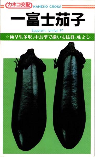 ナス 種 『一富士(いちふじ)』 2000粒 カネコ種苗
