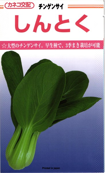 チンゲンサイ 種 『しんとく』 2dl カネコ種苗