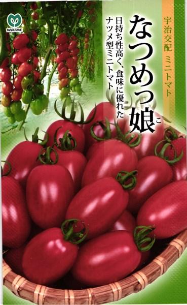 ミニトマト 種 『なつめっ娘。』 1000粒 丸種