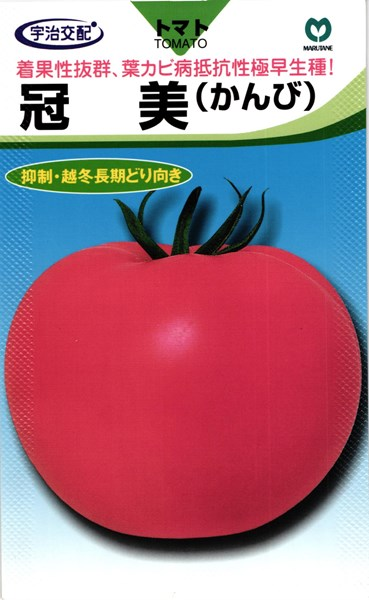 【メール便 OK!】 トマト たね  大玉トマト 種 『冠美』 1000粒 丸種