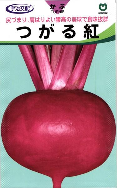 赤カブ 種 『つがる紅』 2dl 丸種