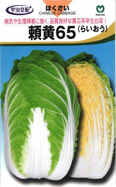 早生ハクサイ 種 『頼黄65』 20ml 丸種