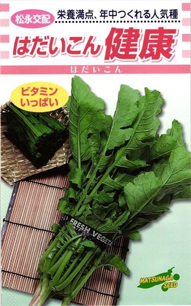 葉ダイコン 種 『健康』 1L 松永種苗