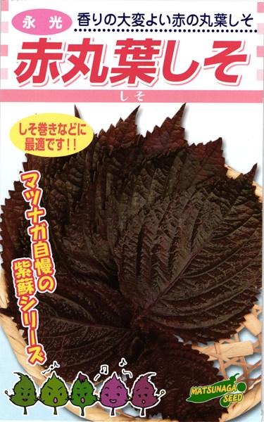 赤しそ 種 『赤丸葉しそ』 1L 松永種苗