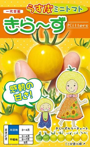 ミニトマト 種 『きら~ず』 500粒 ナント種苗