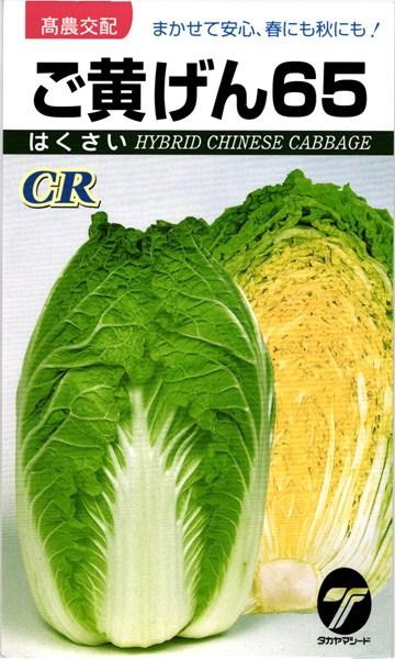 黄芯ハクサイ 種 『CRご黄げん65』 1dl タカヤマシード